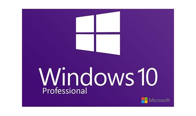 MS Windows 10 PRO
